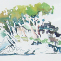 Online Course – Getting Started in Watercolor